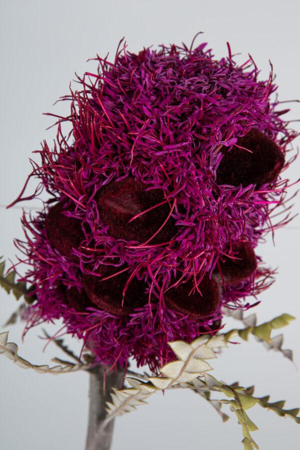 Banksia Speciosa Cones Tinted Hot Pink