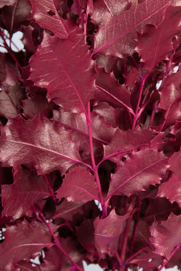Holly Oak Hot Pink