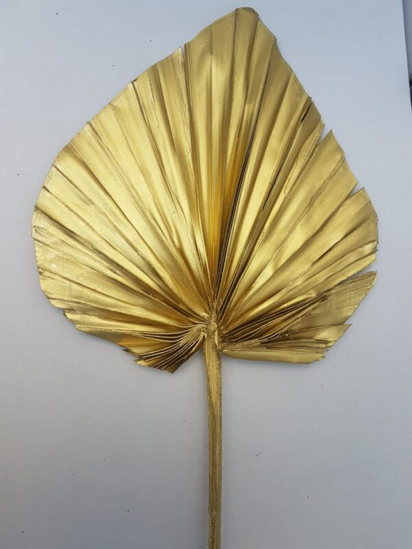 Palm Spear Large Wide Tinted Metal Copper (EUR)