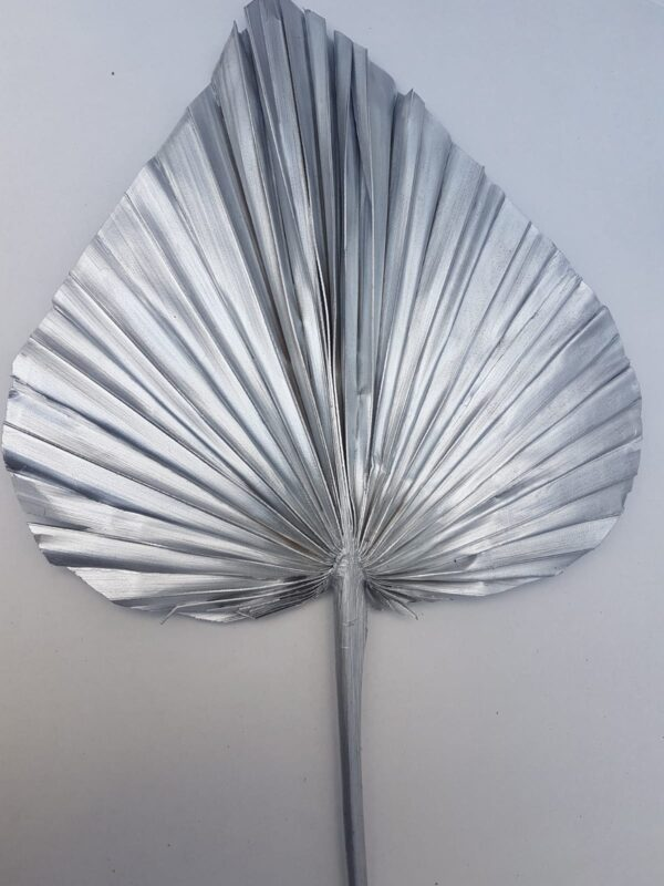Palm Spear Large Wide Tinted Metal Silver (EUR)